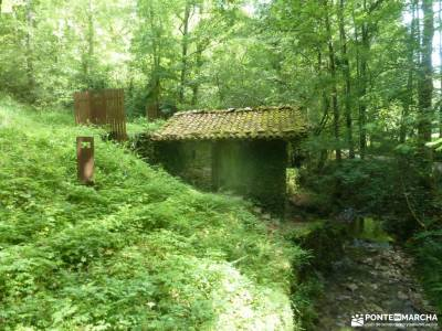 Parque Natural Pagoeta_Valle Leitzaran;el monton de trigo hoz de pelegrina sierra de cazorla ruta de